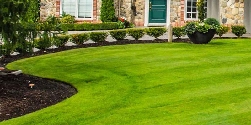Green front lawn and landscaping that has been executed by Seacoast Turf Care.